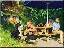 Hundehotel Das Kleine Feriendorf in Jenig