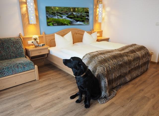 Hunde und Hotel *** Landhotel Obermüller  in Untergriesbach