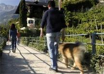 hundefreundliches Landhaus Hotel Kristall in Marling bei Meran