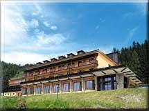 Alpenhof Hotel in Steinhaus am Semmering