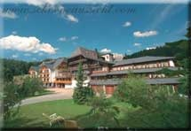 Hotel Schöne Aussicht in Hornberg - Niederwasser