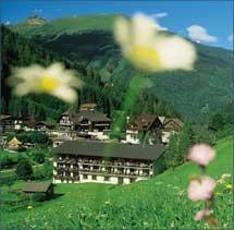 Hundefreundliches Hoteldorf Grüner Baum in Badgastein