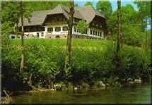 hundefreundliches Hotel Hotel Restaurant Ochsenwirtshof in Bad Rippoldsau-Schapbach Region