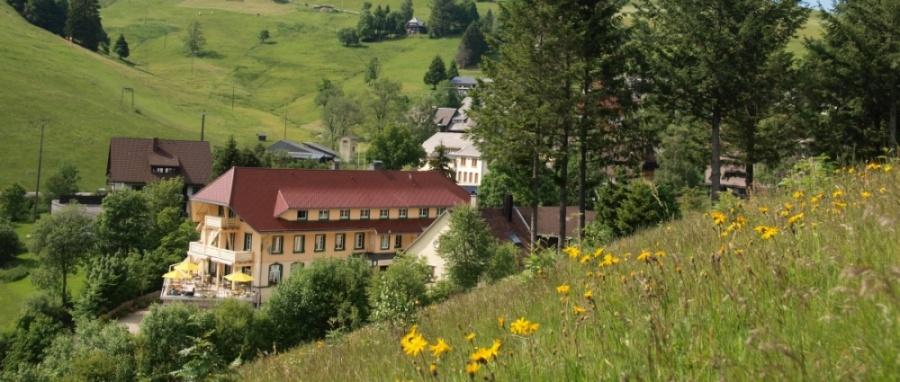 Übernachten im hundefreundlichen Hotel in Todtnau-Muggenbrunn